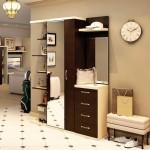 Сборка прихожей мебели